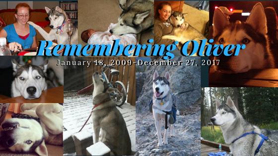 Remembering Oliver2